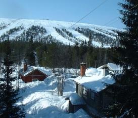 Cottage Sälen