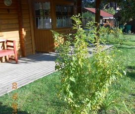 Holiday Home Großzerlang