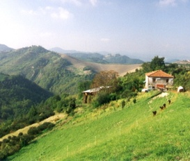 Bauernhof Sassocorvaro