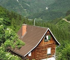 Ferienhaus Kleinreifling-Weyer