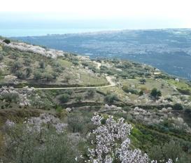 Finca Vélez-Málaga
