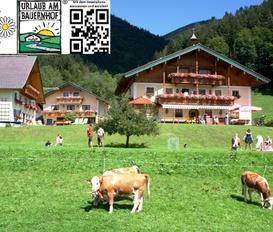 Ferienwohnung Schmiedbauernhof Faistenau