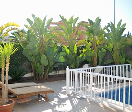 Holiday Home Campoamor