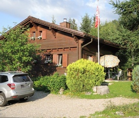Holiday Home Wirzweli - Dallenwil