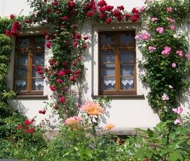 Ferienwohnung Görlitz