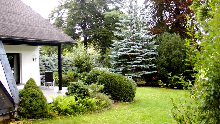 Blick in den großen und umzäunten Garten