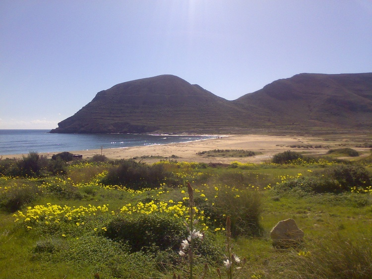 the beach of EL Playazo