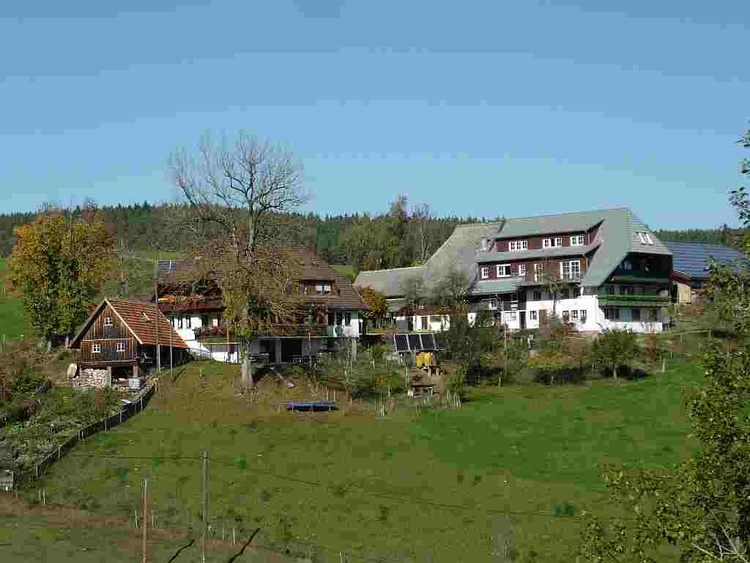 Mooshof - a typical farm in the Black Forest