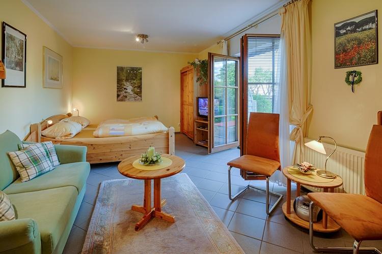Apartment Nr.1 mit 40 m² für 2 - 3 Personen, großer Wohn/-Schlafraum, SAT-TV+DVD, Terrasse