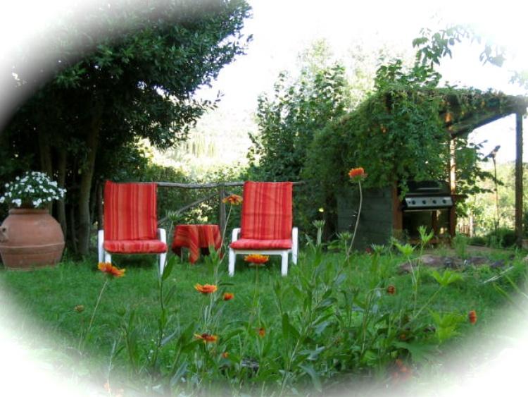 Relax in the big garden