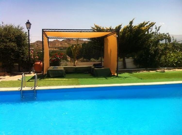 swimmingpool in summer