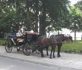 Ferienwohnung Wien