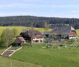 Bauernhof Schramberg-Tennenbronn