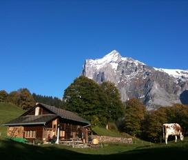 Hütte Grindelwald
