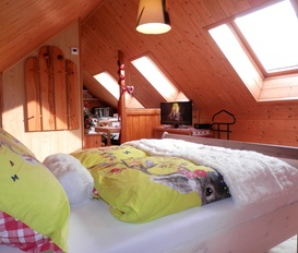 Holiday Apartment Obertraun