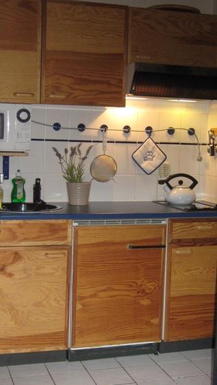 Küchenzeile am Wohnzimmer