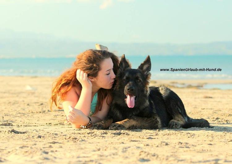 Hunde wohnen bei uns kostenlos