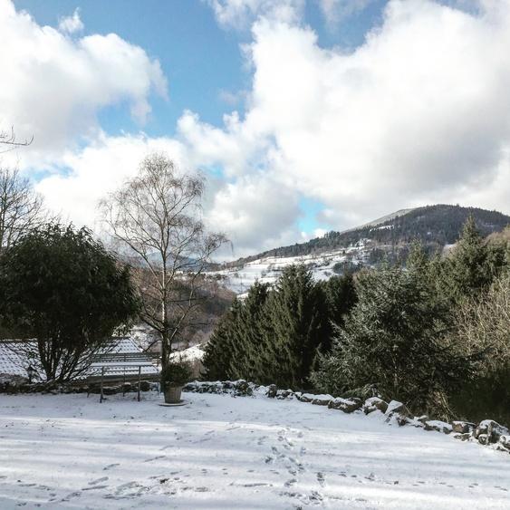 Garten im Winteranzug