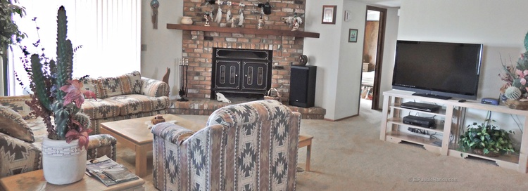 living area w. open fireplace