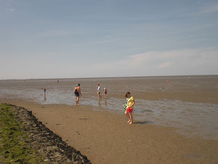 Nordsee bei Ebbe