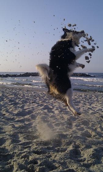 Luftsprung im Sand