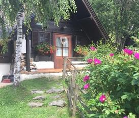 Cottage Donnersbachwald