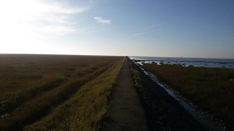 Nordseedeich