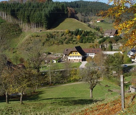 Holiday Apartment Bad Rippoldsau-Schapbach