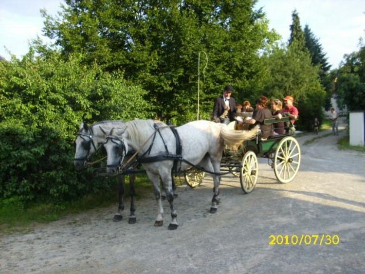 Eine Kutsche von einem befreundeten Hof holt seine Gäste vom  FERIENHOF ab