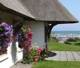 Cottage Bettystown