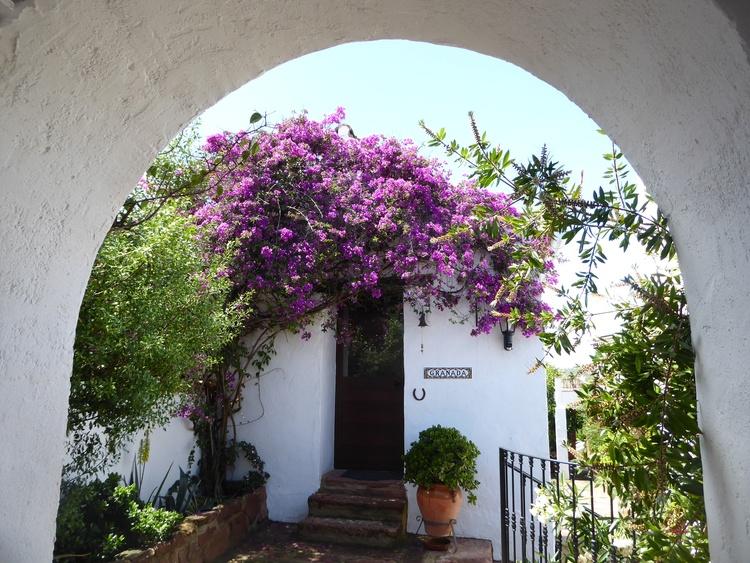 Main entrance - straight room so called Granada