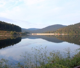 Holiday Apartment Schluchsee-Blasiwald