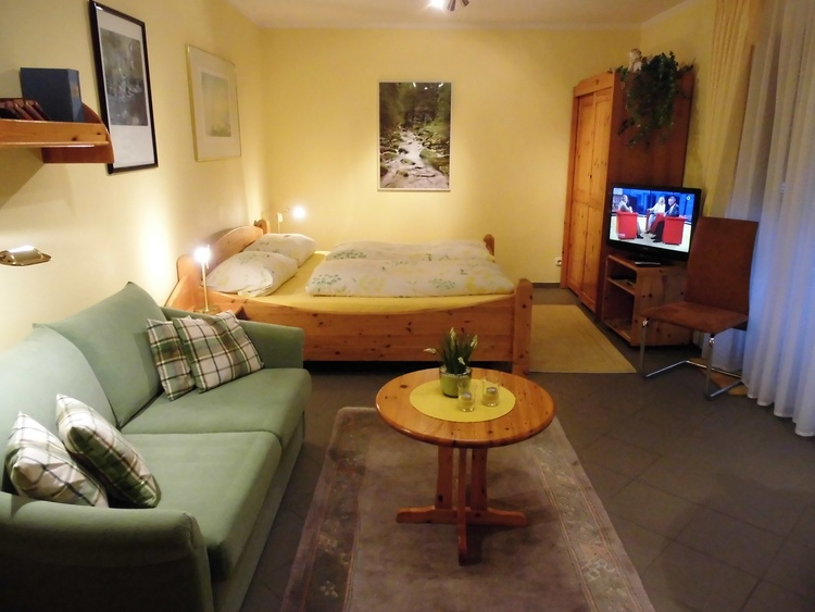 Apartment Nr,1, und ein Schlafsofa