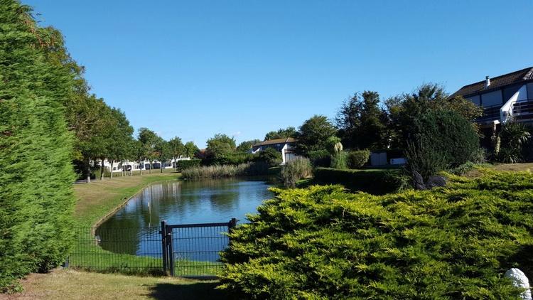 Traumhafter Blick auf den großen Teich