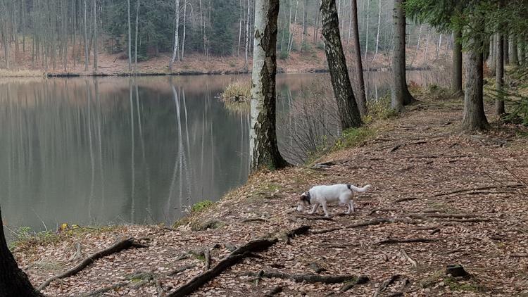 Lake behind the hill at Jivka's