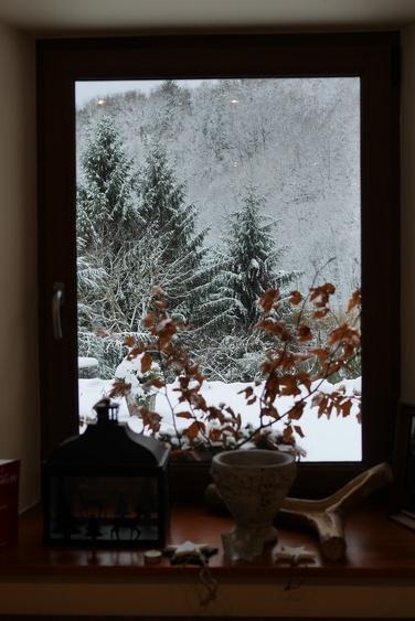 Blick aus dem Esszimmer