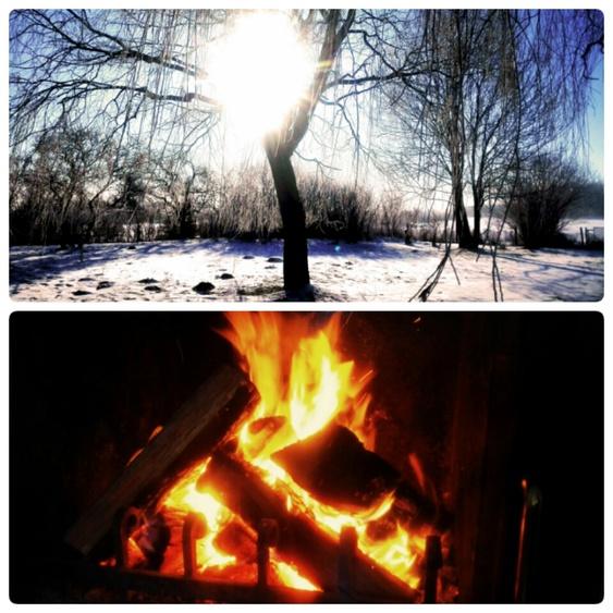 Winter & Kamin