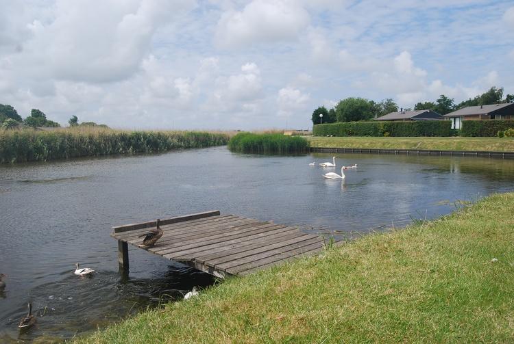 Der Park grenzt im Süden an eine Gracht mit Bootsanlegestelle. Hier können auch Sie angeln.