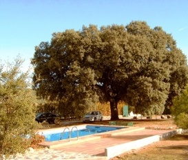 Holiday Home Alhama de Granada / Zafarraya