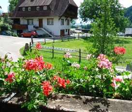 Holiday Apartment Oberharmersbach
