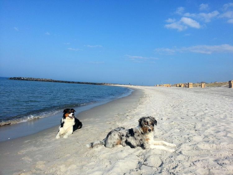 wir machen Urlaub am Strand