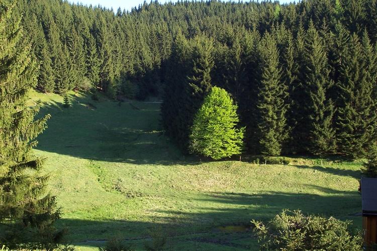 Das Taubachtal