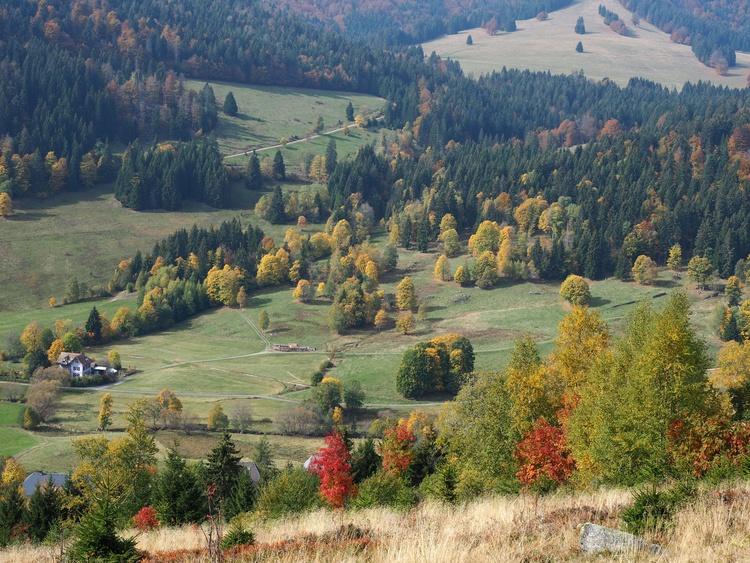 Herbst im Menzenschwander Tal