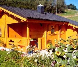 Hütte Ludwigsstadt