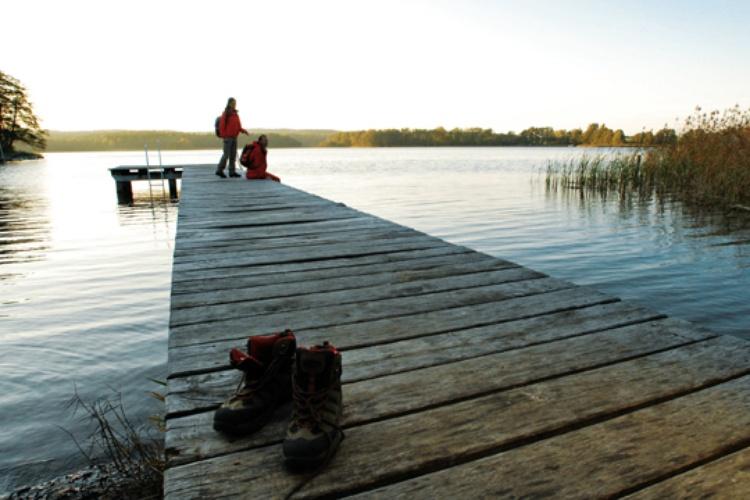Natur pur im Naturschutzgebiet rund um den Kummerower See