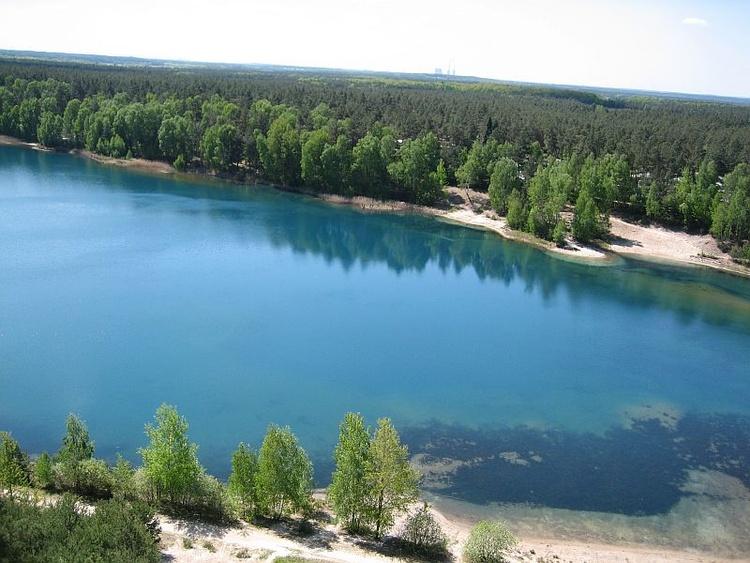 FELIXSEE ein schöner Badesee und bekanntes Tauchgewässer mit 37 m hohem Aussichtsturm5 km entfernt