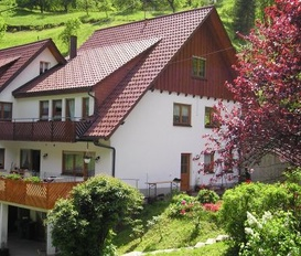 Holiday Apartment Bad Peterstal-Griesbach