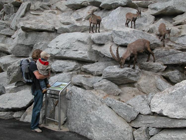 Alpenzoo Innsbruck