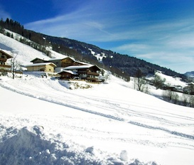 Ferienwohnung Saalbach - Hinterglemm