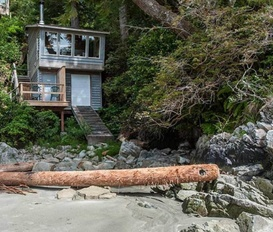Bungalow Tofino Beach Nest
